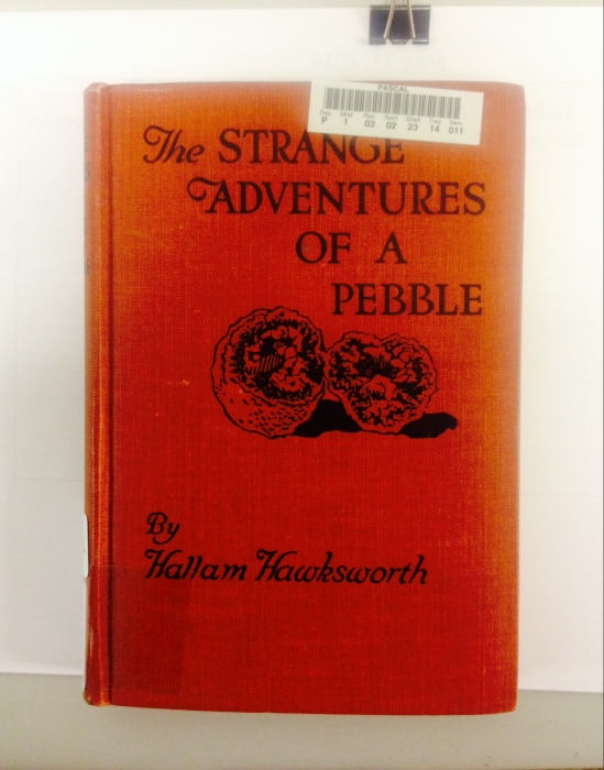 The Strange Adventures of a Pebble